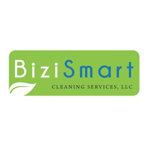 Custom Logo Design - Cleaning Services (Las Vegas, NV)
